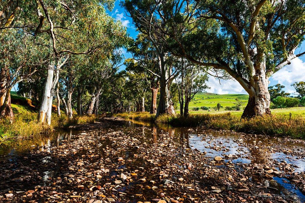 The Heyson Trail